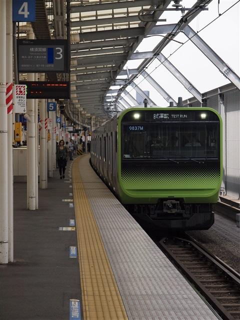 横須賀線・湘南新宿ライン(品鶴...